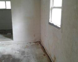 807 Toman Ave., Clariton, Pennsylvania 15025